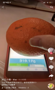 touchscale